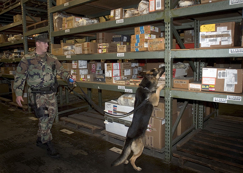 US_Navy_041026-N-5134H-002_Canine_Handler_Master-at-Arms_1st_Class_Mark_A._Taylor_and_Explosive_Detection_Dog_Nero_search_the_many_shelves_of_Whidbey's_Supply_Warehouse_for_explosive